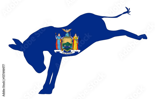 New York Democrat Donkey Flag