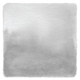 Fototapety Abstract gray watercolor on white background