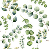 Watercolor pattern with eucalyptus. Hand painted floral ornament with silver dollar, seeded and baby eucalyptus branches isolated on white background. For fabric, print or design - 137672442