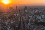 Tokyo Stadzentrum, Blick über die Häuser
