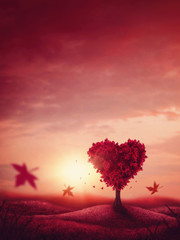 Heart love tree