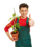 Zufriedener Gärtner hält Daumen hoch