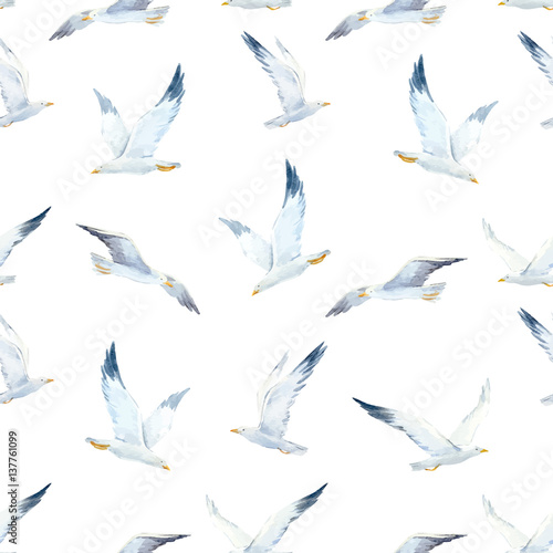 Watercolor seagull vector pattern - 137761099