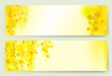 Yellow mimosa spring flowers vertical garland on white background. - 137785044