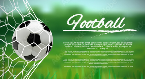 Soccer or Football Ball on green background.