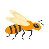 bee insect flower pollen vector illustration eps 10