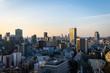 Tokyo Urban landscape - マジックアワー �京�都市風景1