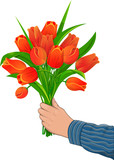 Red Tulips in hand