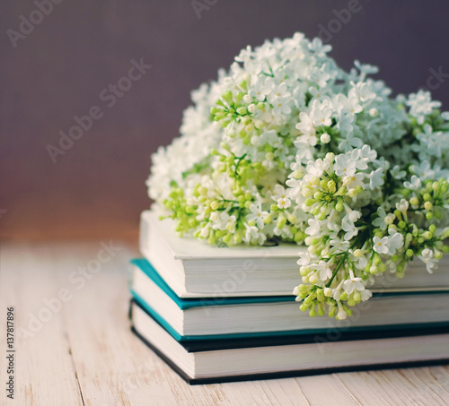 Bouquet of a white lilac on the books on the wooden surface, soft focus.