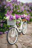 White retro bicycle with basket of flowers