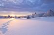 canvas print picture - Winterlandschaft im goldenen Sonnenlicht mit einer kleinen Holzhütte im Hintergrund