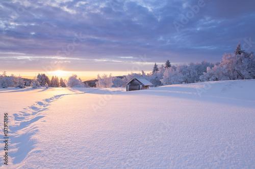 canvas print picture Winterlandschaft im goldenen Sonnenlicht mit einer kleinen Holzhütte im Hintergrund
