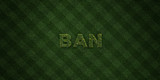 BAN - fresh Grass letters with flowers and dandelions - 3D rendered royalty free stock image. Can be used for online banner ads and direct mailers..