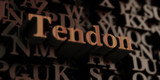 tendon - Wooden 3D rendered letters/message.  Can be used for an online banner ad or a print postcard.