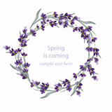 Fototapety Beautiful lavender wreath Vector illustration. Hand drawn flowers for Thank you card, Greeting card or Invitation