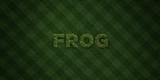 FROG - fresh Grass letters with flowers and dandelions - 3D rendered royalty free stock image. Can be used for online banner ads and direct mailers..