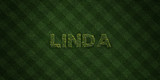 LINDA - fresh Grass letters with flowers and dandelions - 3D rendered royalty free stock image. Can be used for online banner ads and direct mailers..
