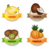 Fruit labels realistic set