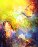 flying butterfly with cala flower in cosmic space. Painting and graphic design.