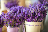 Fresh lavender in the English farm shop is in vintage white metal pails - 137969881