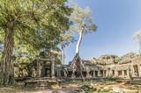 Rovine del tempio di Angkor Wat