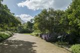 Jardim botanico de cape town