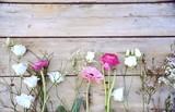 Frühlingsblumen - Blumengrüße - Ranunkeln, Gerbera