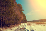 Dirt road cowered with snow. Pine forest along road in sunny day. Snowy winter. Rural landscape.