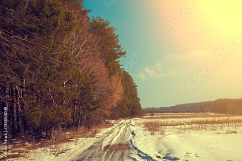 Fotobehang Zwavel geel Dirt road cowered with snow. Pine forest along road in sunny day. Snowy winter. Rural landscape.