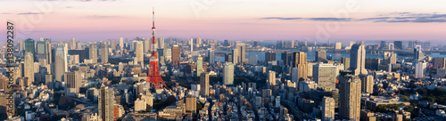 Fotobehang Tokio Panorama view of Tokyo city at dusk time , Japan