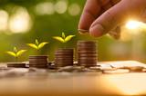 saving money and investor insurance concept - 138093219