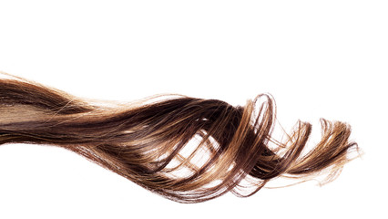 brown hair on white background