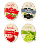 Set of labels of berries and fruit. Raspberry, blackberry, pomegranate, grape. Vector.