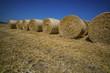 Getreideballen aus Stroh - 138308623