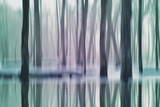 Abstract fantasy forest, spring river, nature background