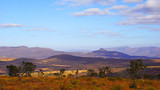 Panorama of south african sawannah and the the drakensberg mountains