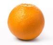 Quadro Ripe orange isolated
