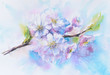 Flowers of cherry blossom.Picture created with watercolors.