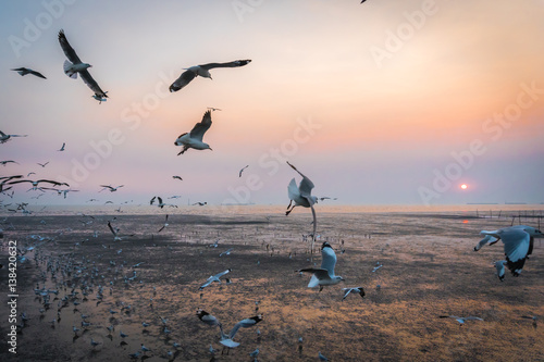Deurstickers Amsterdam Tranquil scene with seagull flying at sunset at Bangpoo Samut Prakan, Thailand is most popular and famous relax in evening time
