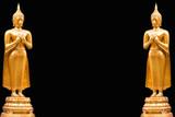 Standing Buddha isolated background
