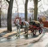Old horse harnessed to a cart on the street in winter sunny day