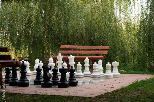 Large Outdoor Chess Set In The Park