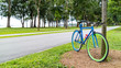 colorful bicycle with green trees in a Park by the sea