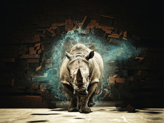 rhino destroy brick wall 3d rendering image  © tiero