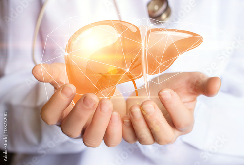 Support healthy liver.