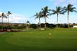 Golf course with tropical palm trees, Ko Olina, Oahu, Hawaii, USA
