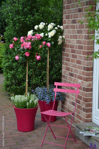 Rosenstämme pink und weiß 9 Poster