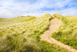 Wild Irish landscape with sand dunes - Nature trail to the beaches and the ocean (Mullagmore - Ireland)