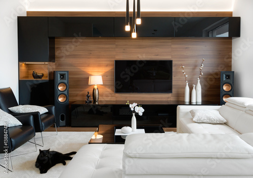 Modern Living Room With Stereo Speakers Buy Photos Ap Images