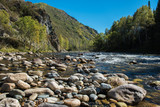 Fast mountain river in Altay